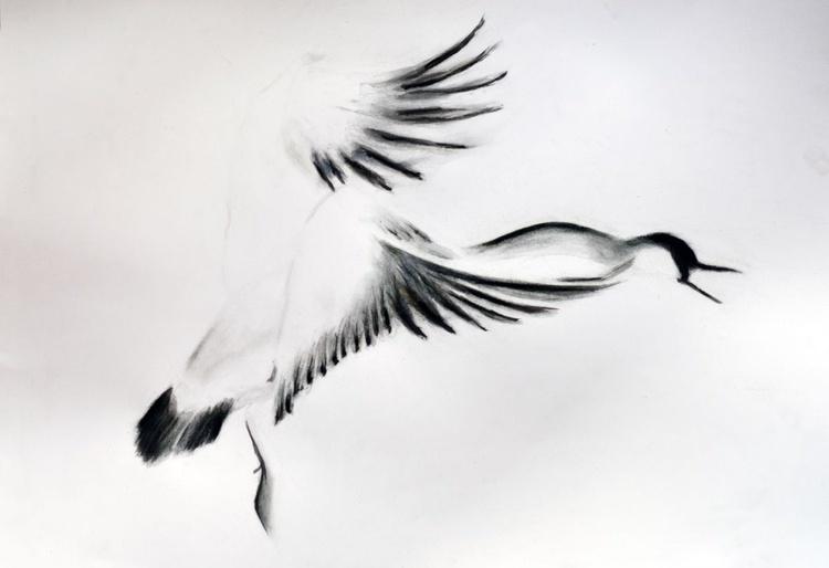 Goose - Image 0