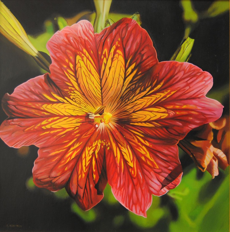 Salpiglossis , Oil on canvas - Image 0