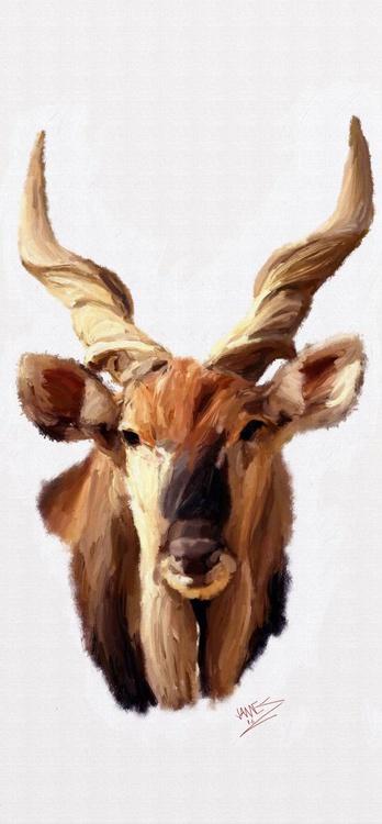 Eland Antelope - Image 0