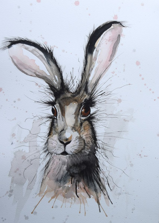 'Hairy Hare' - Image 0