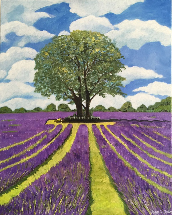 THE LAVENDER FIELDS - CARSHALTON - Image 0