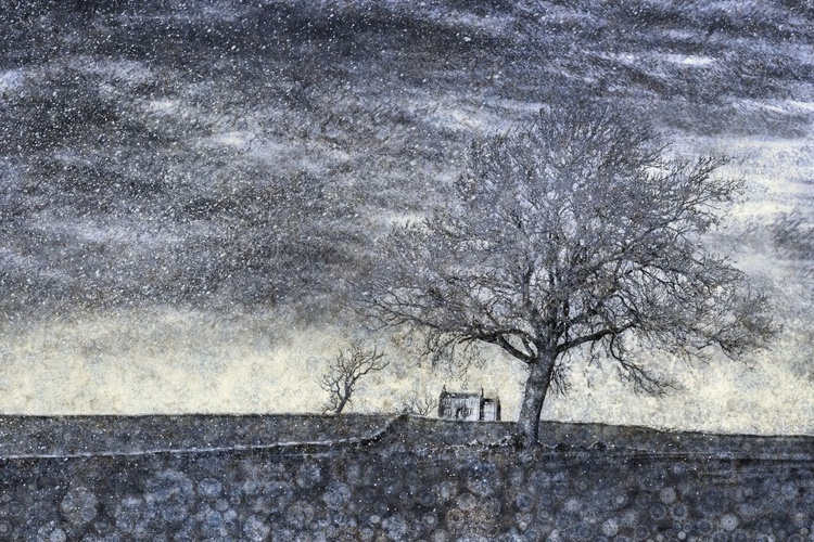 Winter Gale (Ltd Edition of only 20 Fine Art Giclee Prints from original artwork.) - Image 0