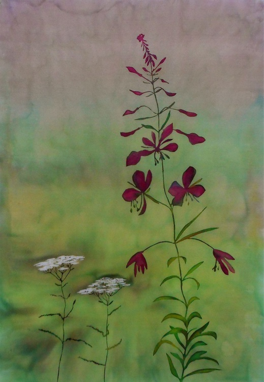 Early Morning Fireweed - Image 0