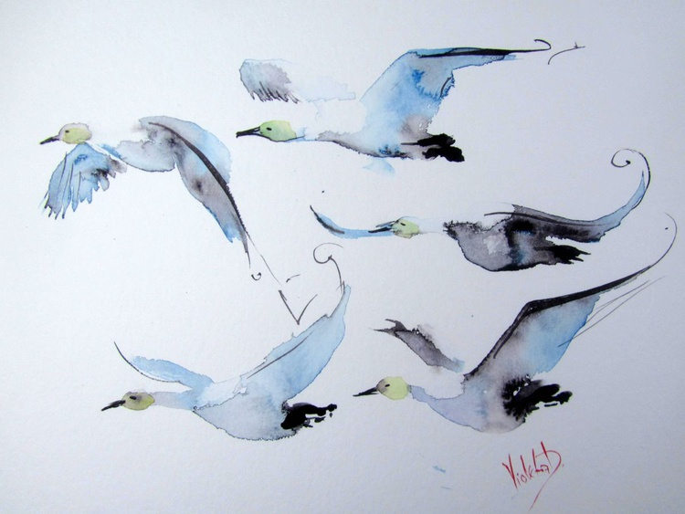 A Flock of Swans in Flight 2 - Image 0