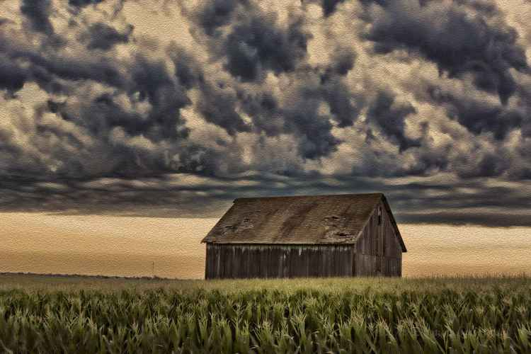 Gathering Storms over a Prairie Field -
