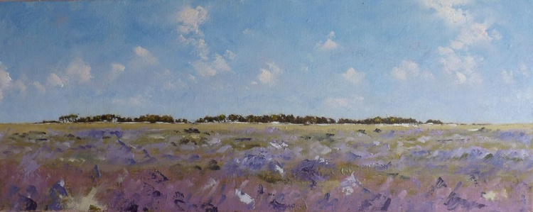 East Hills Summer Sea Lavender - Image 0