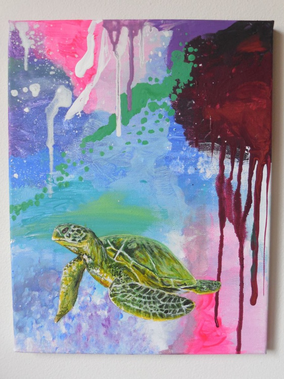 Sea Turtle Collection: 2 - Image 0
