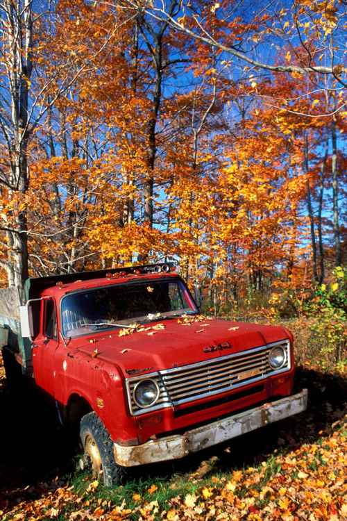 Fall and an Old Red Truck in New England