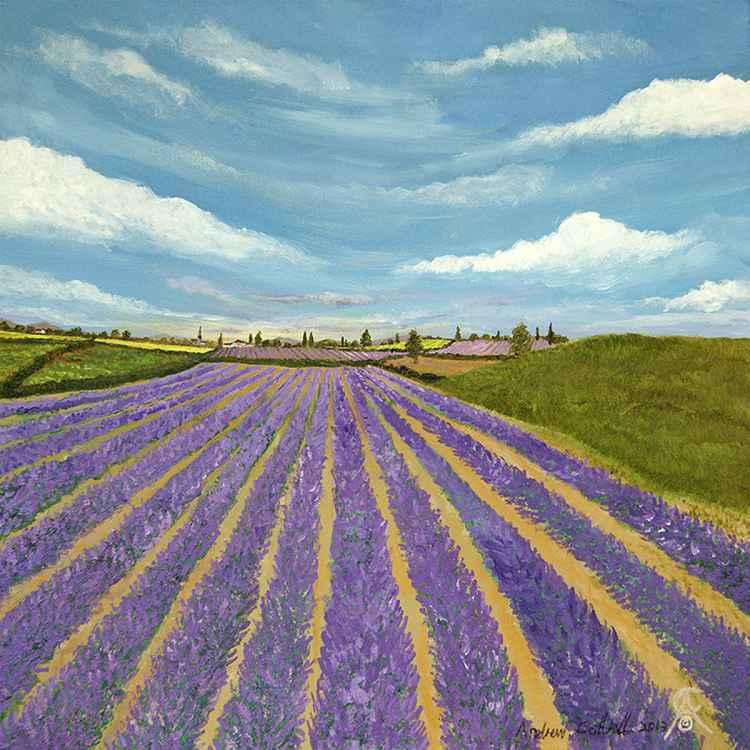 English Lavender -