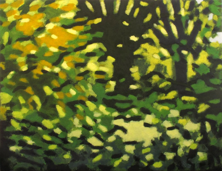 Trees along the River Exe 1 - Image 0