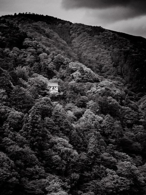Senkō-ji Temple, from the Japan Notebook. 10 X 8 Frame - Image 0