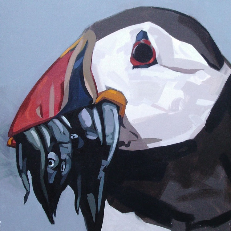 Puffin - Image 0