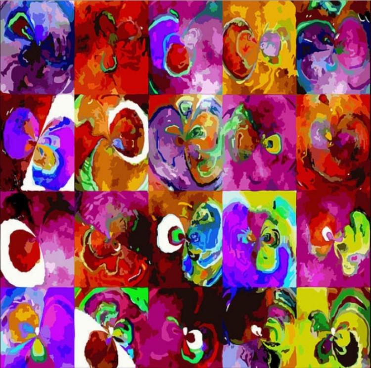 fleurs - Image 0