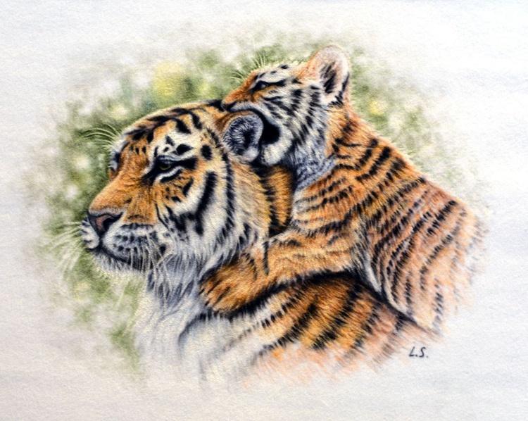 "Tigers Original pastel drawing 25x35cm (10""x14"") - Image 0"