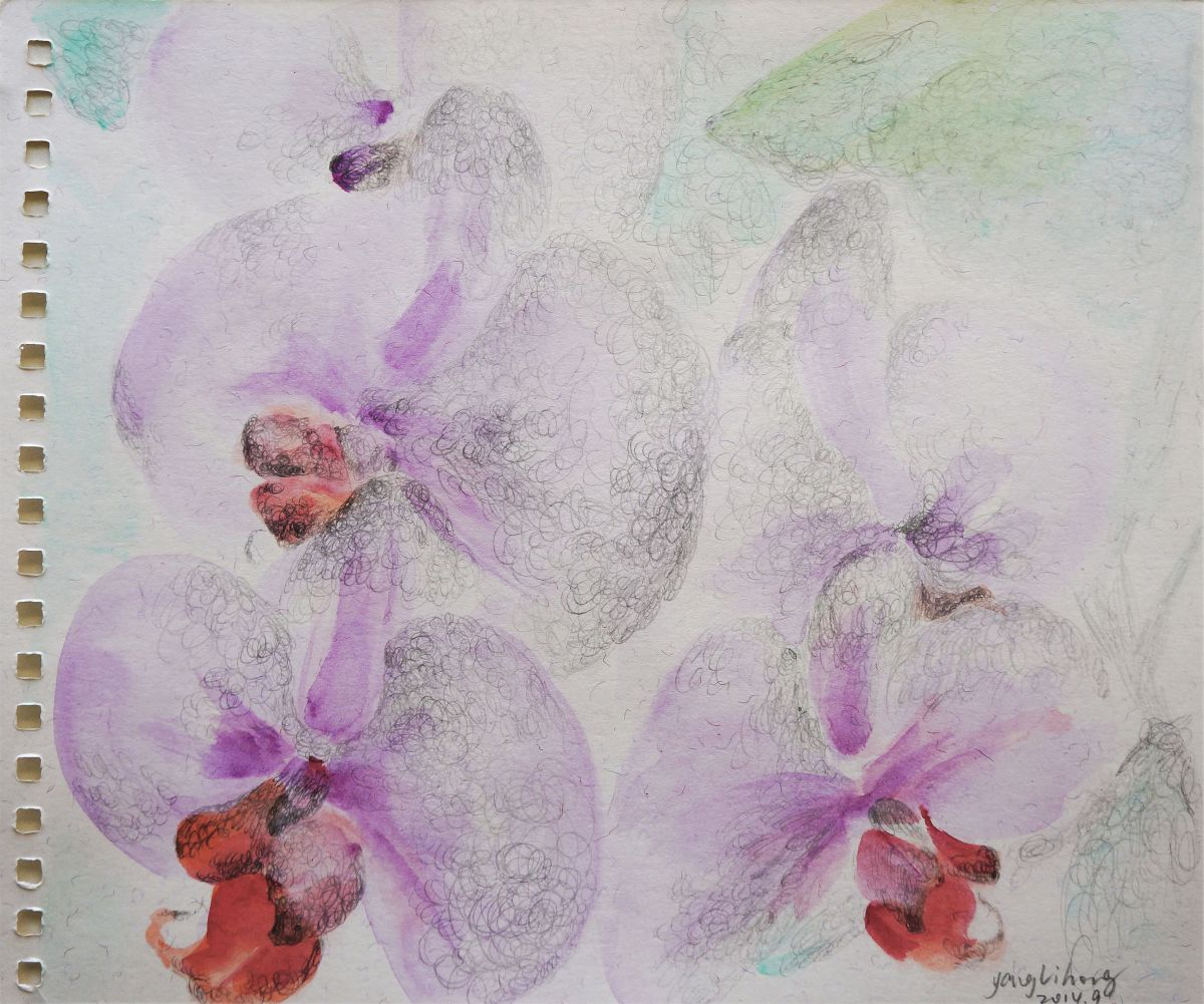 Flower language 2014 Watercolour by lihong yang
