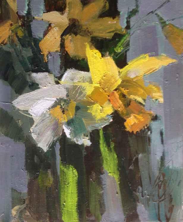 Etude (daffodil) -