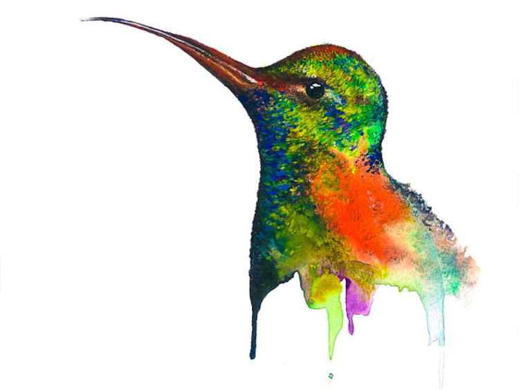 Hummingbird, Awaiting -