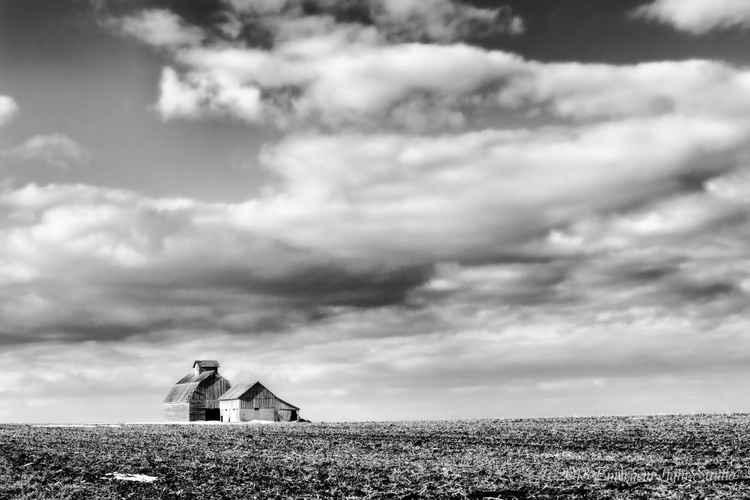 Spring Begins on the American Prairie -