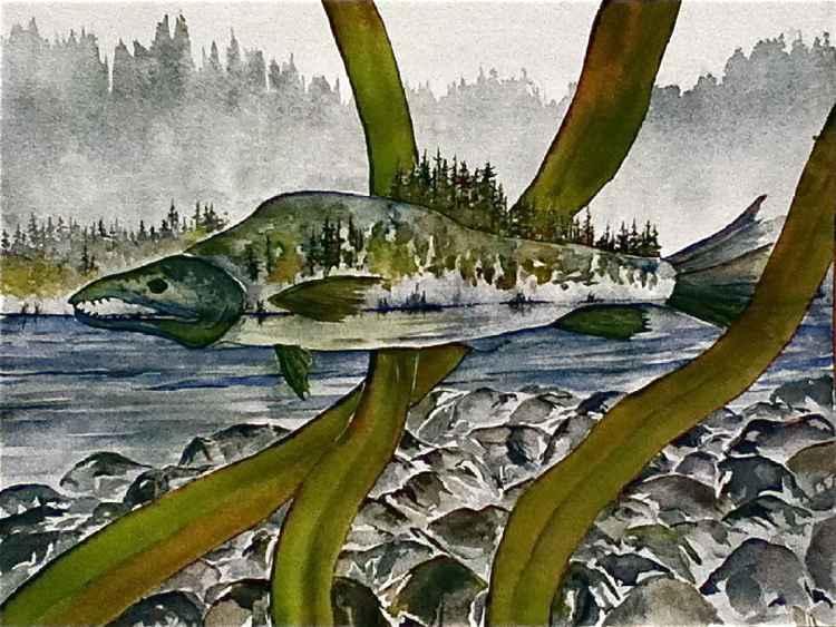 Salmon Landscape -