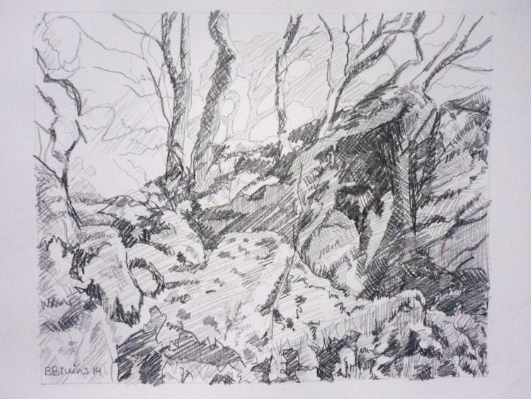 Wildwood at the Dewerstones, Dartmoor - Image 0