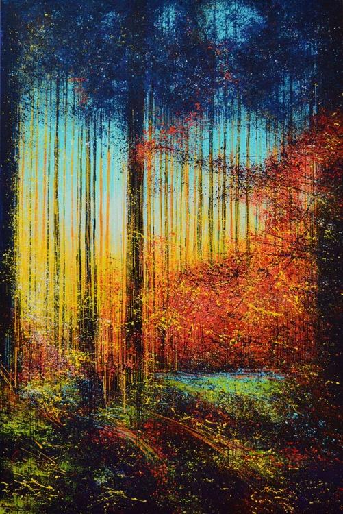 Sunlight through the trees - Image 0