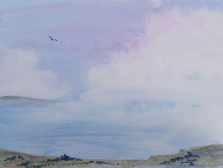 Dawn Estuary -