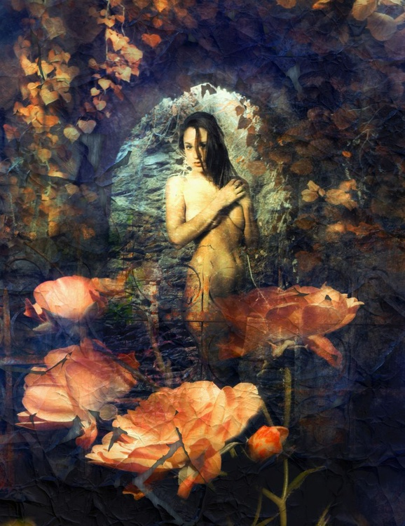 Behind a fence of roses - Image 0
