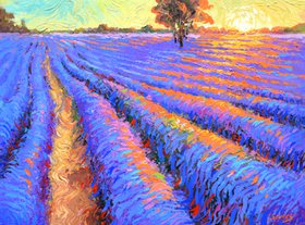 "Evening lavender field - Oil Painting On Canvas by Dmitry Spiros. Size: 36""x28"" (90x70 cm) by Dmitry Spiros"