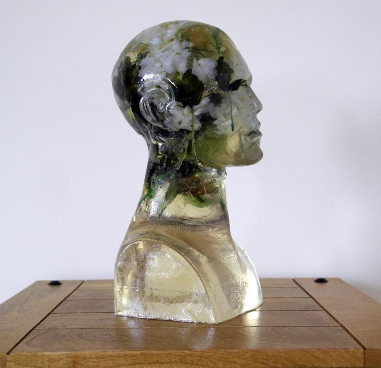 Daisy Brain - Image 0