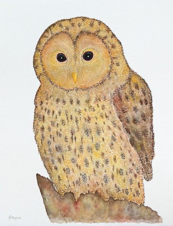The Ural Owl (Strix uralensis) - Image 0