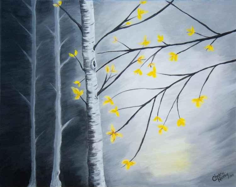 Evening Birch -