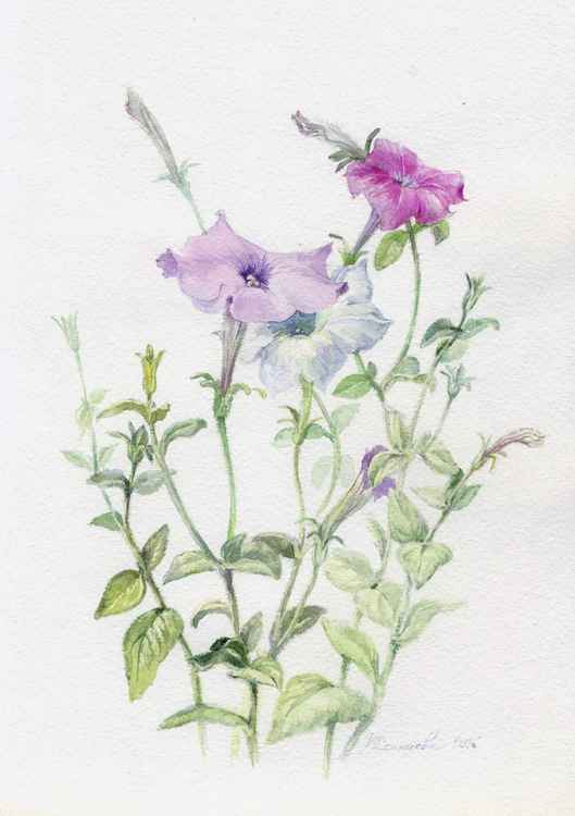 "Original watercolor ""Petunia 2"""