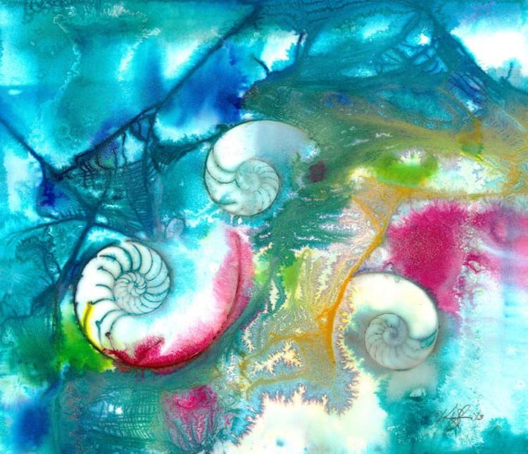 Sea Jewels No. 15 - Image 0