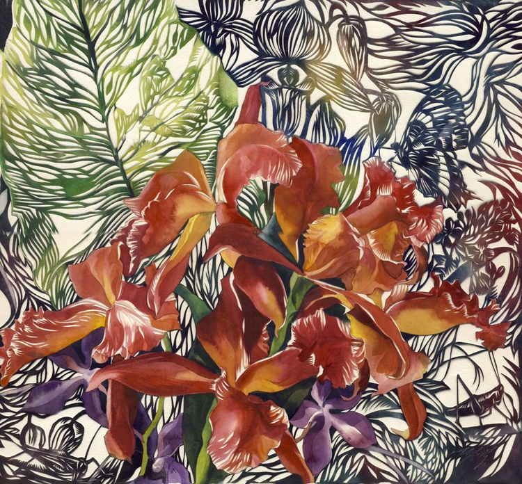 wild orchid - Image 0