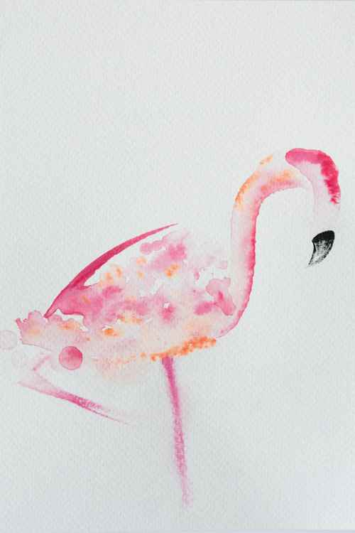 Peachy Flamingo