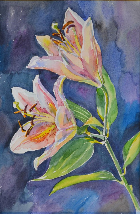 Lily 2 - Image 0