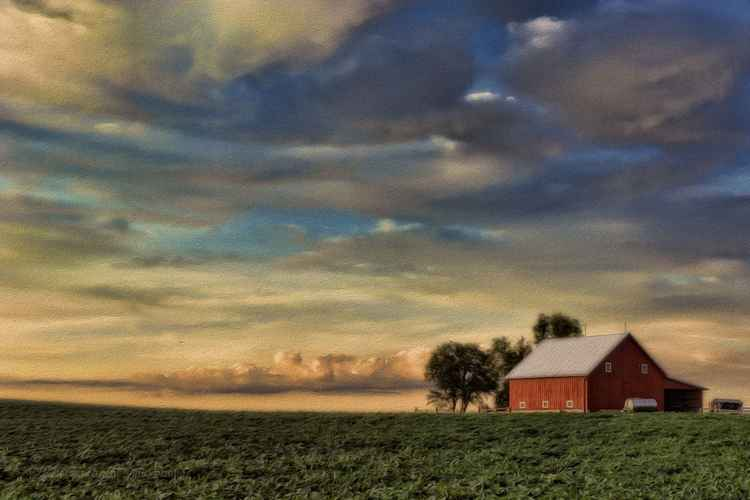 The Earth and Sky of a Prairie Summer -