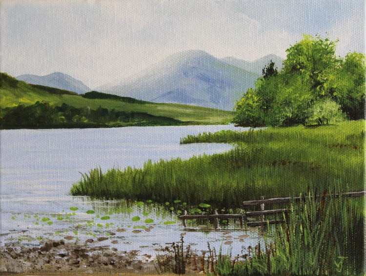 Summer at Loweswater - Image 0