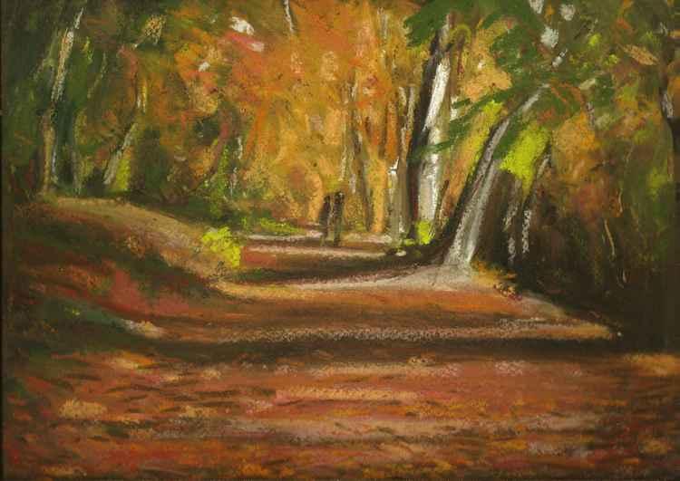 Autumn Woods No.4