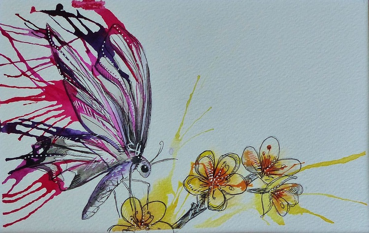 Butterfly on Blossom - Image 0