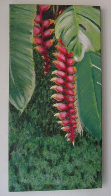 Bananeira de Jardim - Image 0