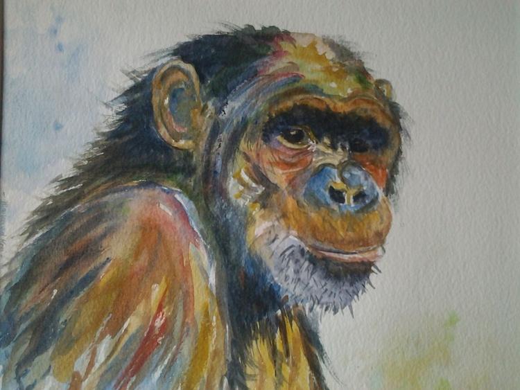"""CHIMP"", watercolour - Image 0"