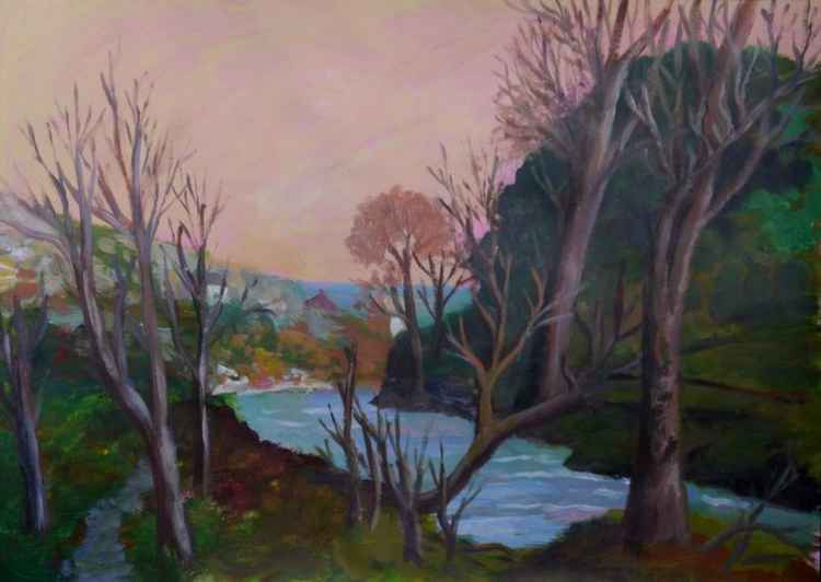 Winter afternoon, Lamorna valley. -