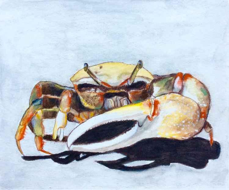 Crab #1 -