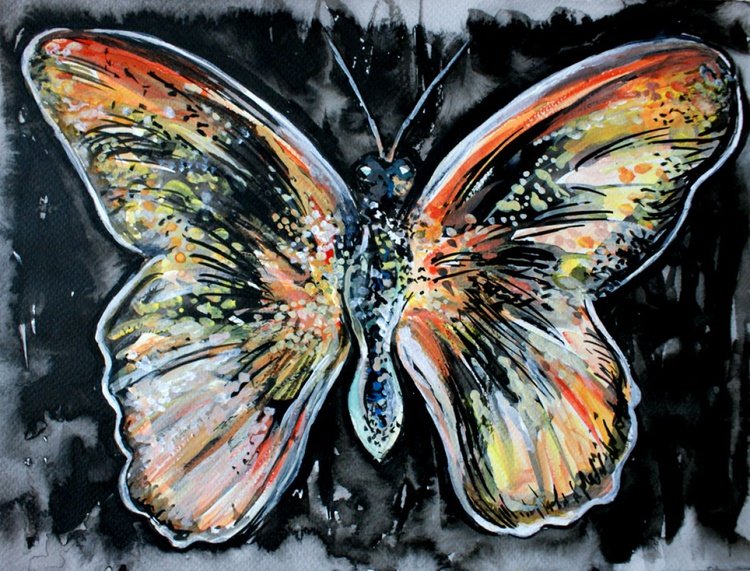 Butterfly at Night - Image 0