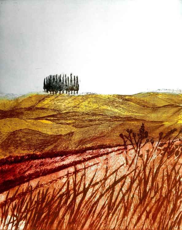 Cypresses -