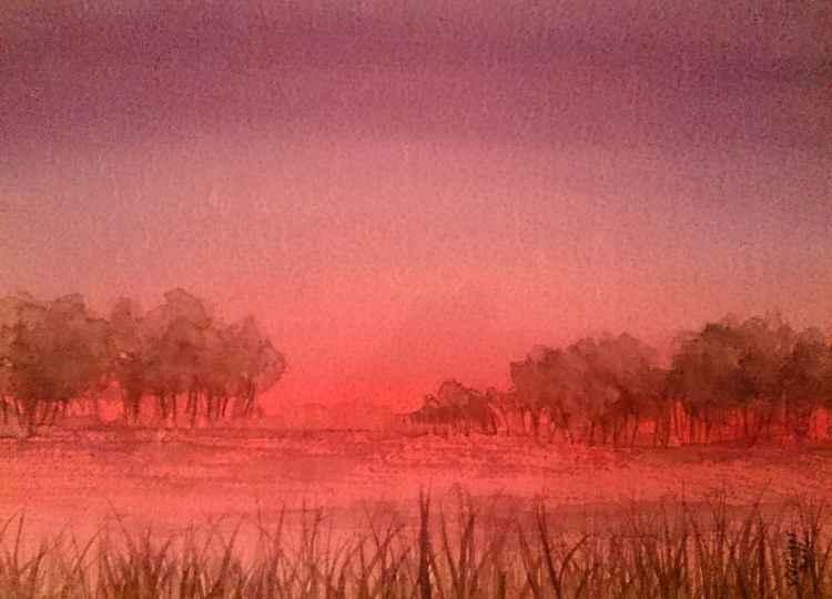 pink sunrise -