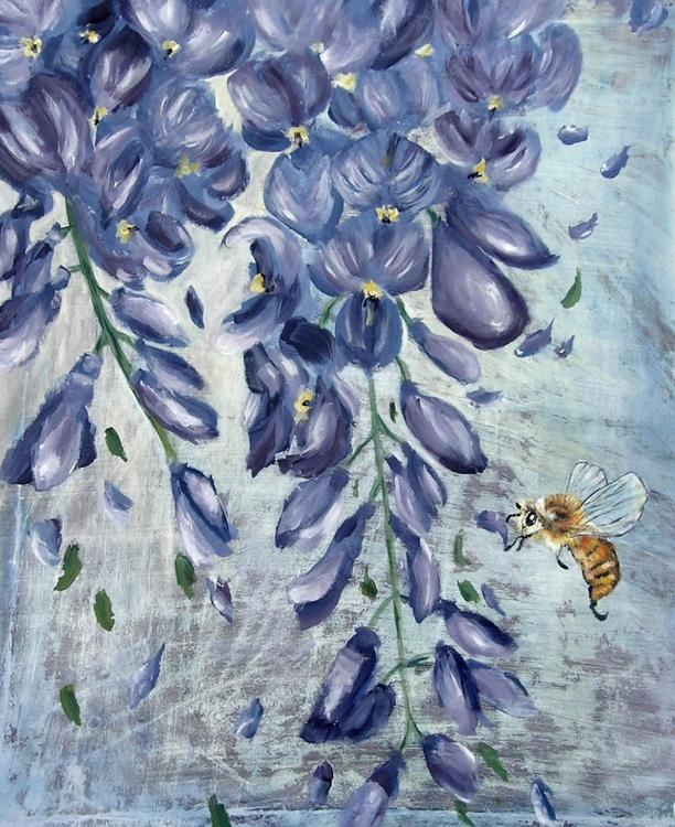 apis mellifera in reconnaissance on wisteria sp. - Image 0