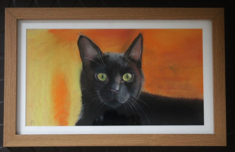 Not a Black Cat, framed picture of a black cat - Image 0