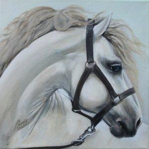"""""""The white horse"""" by Lyubov Rasic"""